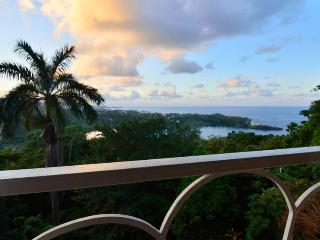 The Fan Villa, Port Antonio