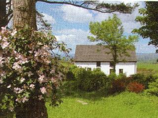 Cottage With Amazing Views, Bantry