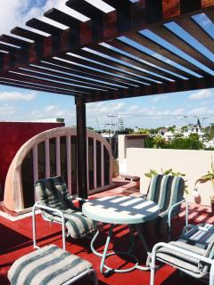 Roof Top Terrace with Dome to GF Condo