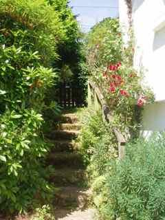 The steps up to the side garden