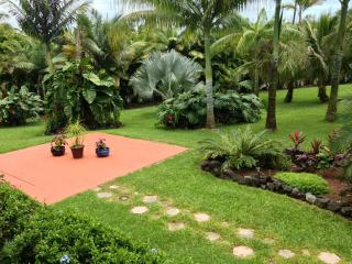 The one acre property features a variety of native plantings, tropical fruit trees and flowers