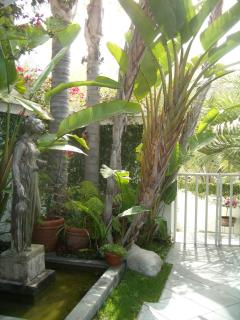 Gated & private main entrance , pond , water fountain & exptic, tropical plants
