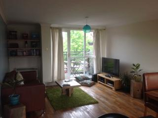Cosy flat, Liverpool River views & sunny balcony, Birkenhead