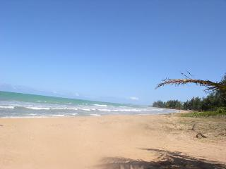 BEACHFRONT PROP and VIEW OF 'EL YUNQUE' RAINFOREST, Río Grande