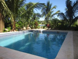 Luxury Waterfront 3 Bedroom w/ Pool and Dock