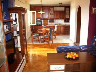 Sunny apartment near Zadar beach!