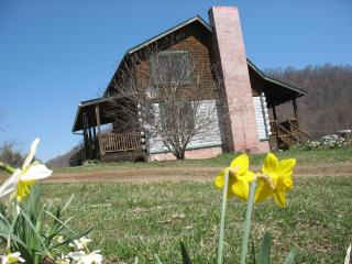 Organic Farm Log Cabin In Mountains - Asheville, Canton