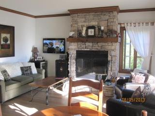 Mont Tremblant 1 Bedroom Condo - Free WIFI