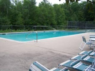 Kid and pet friendly clean condo, North Conway