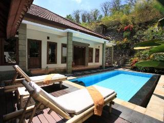 Pool and terraced garden