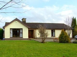 Ardnacrusha - 5446, Limerick