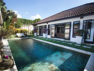 Villa Damai 2 - Tranquil Hideaway in North Umalas