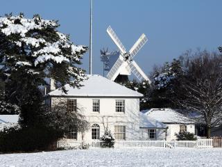Wimbledon Common in winter