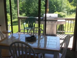 Catskill  Mtn.views Horses/ Margaretville/Roxbury