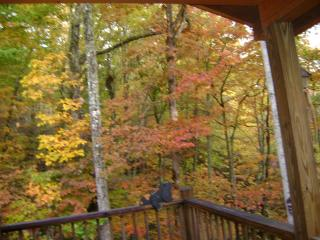 Beautiful Fall colors from deck
