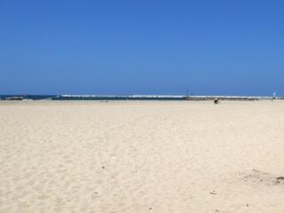 Playa del Rey by the Beach -Ocean View 3 bd-2 bath