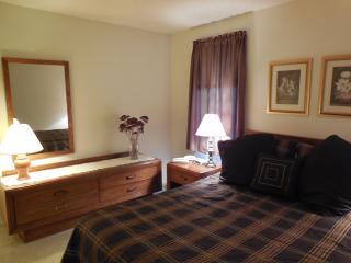 Riverview 1 BR Condo; Aspen 5 at Dells Club Condos, Wisconsin Dells