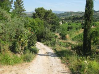 The Beautiful Vineyards and Beaches of Provence