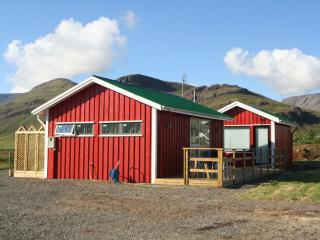 Northern Lights Cottage  Wi-Fi, Skalafell