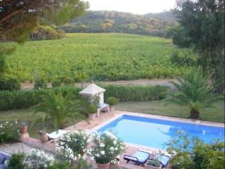 Exclusive view from first floor on the Roumegou vineyards and the hills of the Bastide Blanche.