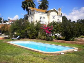 Luxury Villa - 10 mins Aveiro , 50 Km from Oporto