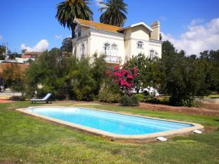 Luxury Villa - 10 mins Aveiro , 50 Km from Oporto