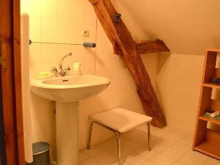 Le Rabelais, salle d'eau avec douche et WC