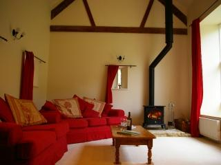 Spacious lounge with log burner