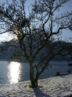 Winter sunshine by Lake Wolfgang