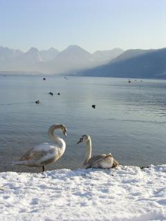 Winter in St Gilgen