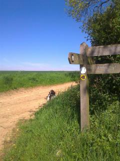 Peddars Way National Trail is a short walk across our field and takes you right to the coast
