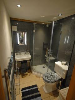 Stylish downstairs shower room
