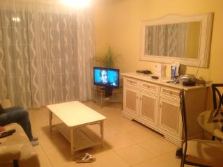 This is the lounge with a sofa bed ; /dinning table seats 4 /flat screen TV all english channels