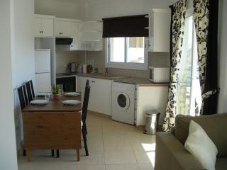 Kitchen / Dining Area fully equipped