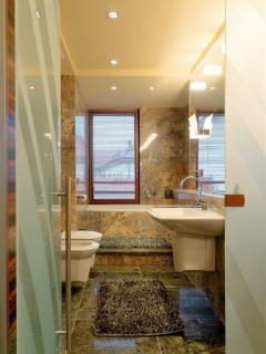 Second bathroom belonging to the master suite with tub, shower and bidet