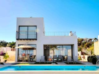 Ocean View Villa, Neo Chorion