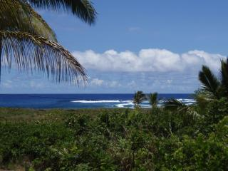 Ocean View Pualani Tropical Home, Snorkel, Hot Tub, Pahoa