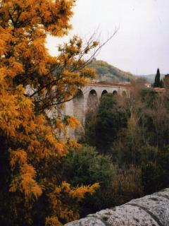 Early spring mimosas in Ceret, most visited for its Musee d'Art Moderne, just off the Tech valley in