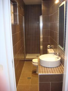 Luxury Shower Room  Ground Floor