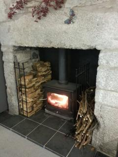 Kitchen wood burning stove