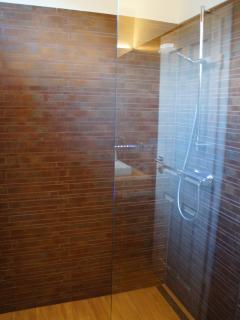 Shower in 2nd floor bathroom