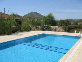 Ferdi pool