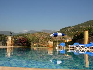 Neptune Villa, Alanya
