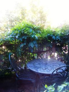 The table on the patio in the morning