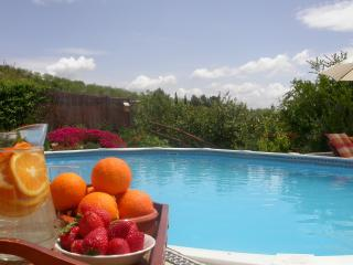 Squeeze your own citruses for refreshments by the Pool