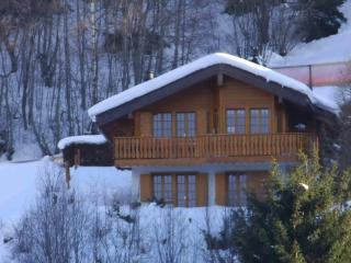 Luxury chalet close to lifts. Great for a family, Nendaz