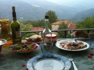 Charming farm Villa Tuscan panorama, sleeps 8