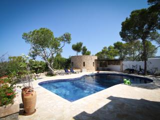 Stunning 12m pool with shallow end and step entry - perfect for kids