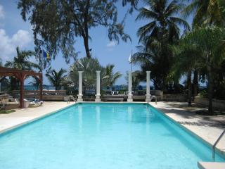 Stylish Apartment 5 minutes from beach and shops, Holetown