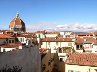 Exclusive loft in center of Florence - La Loggia